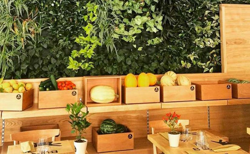 Organic restaurant: requirements of the new restaurant